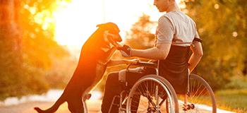Доступен ли кредит инвалидам?